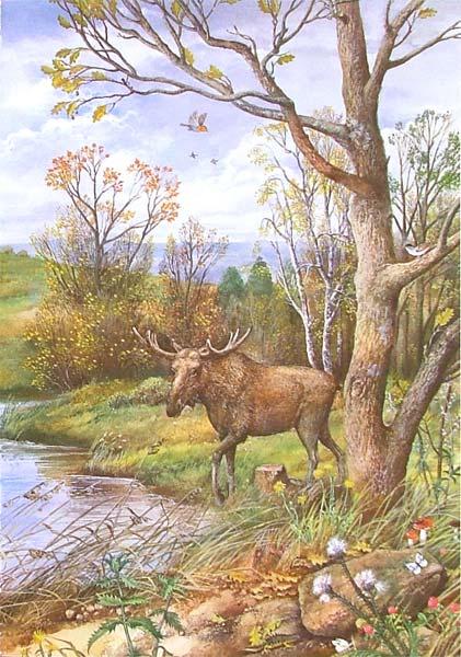 Иллюстрация 1 из 66 для Атлас. Времена года - В. Свечников   Лабиринт - книги. Источник: Лабиринт