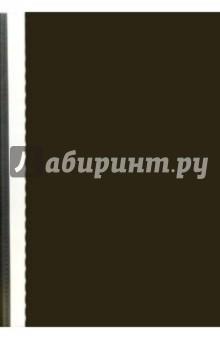 Папка-скоросшиватель 1705010-01 (черная) А4