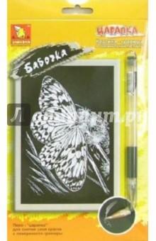 Бабочка: Картина гравюра в оригинальном паспарту