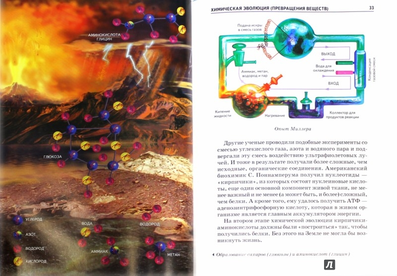Иллюстрация 1 из 46 для Происхождение жизни - Ирина Рябинина | Лабиринт - книги. Источник: Лабиринт