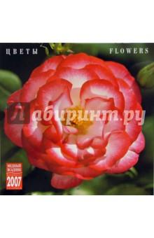 Календарь: Цветы 2007 год (07114)