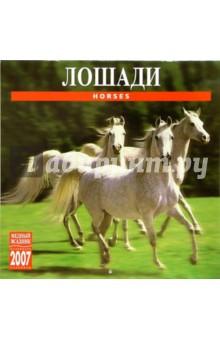 Календарь: Лошади 2007 год (07136)