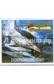 CD. Dolphins Delight