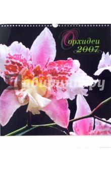 Календарь: Орхидеи 2007 год
