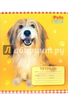 Тетрадь 12 листов, клетка (ТК412950)