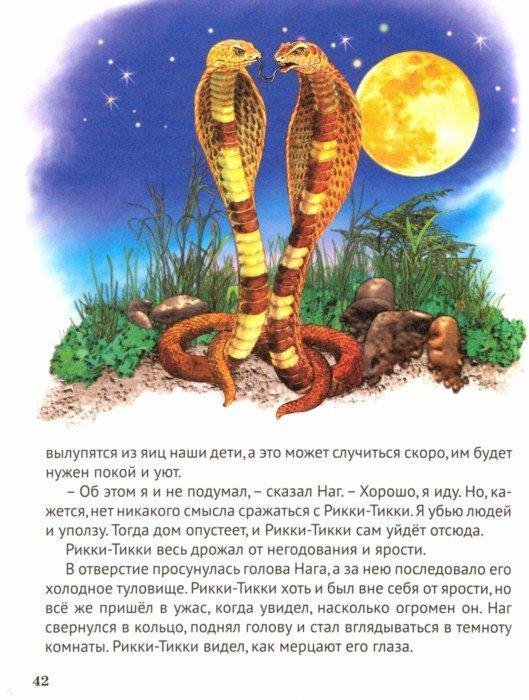 Иллюстрация 1 из 26 для Сказки - Редьярд Киплинг   Лабиринт - книги. Источник: Лабиринт