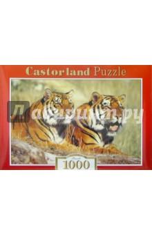 Puzzle-1000. Тигры (С-100880)