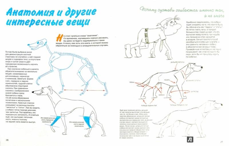 Как рисовать для 7 собак