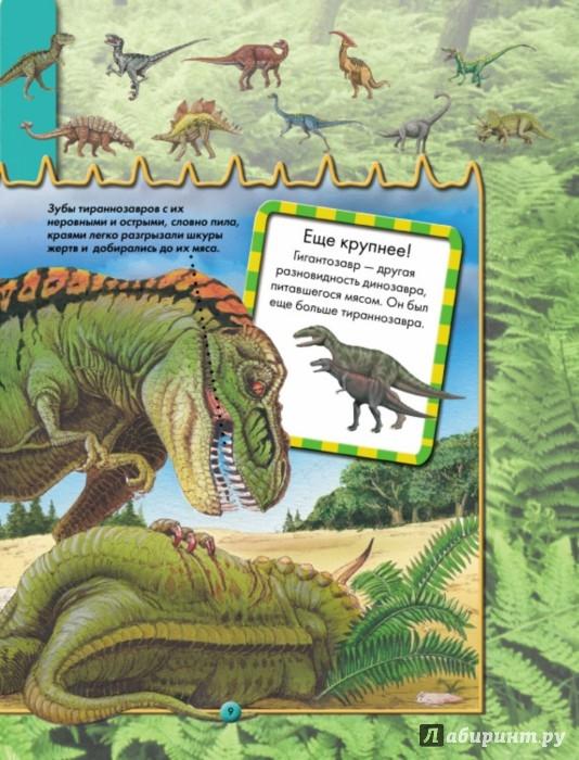 Иллюстрация 1 из 41 для Моя первая энциклопедия животных - Стив Паркер | Лабиринт - книги. Источник: Лабиринт