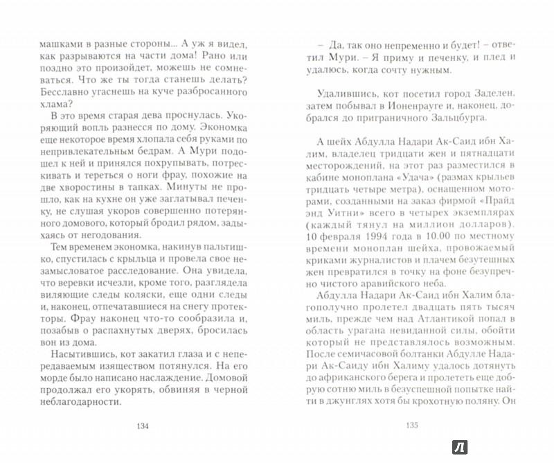 Иллюстрация 1 из 9 для Путь Мури - Илья Бояшов   Лабиринт - книги. Источник: Лабиринт
