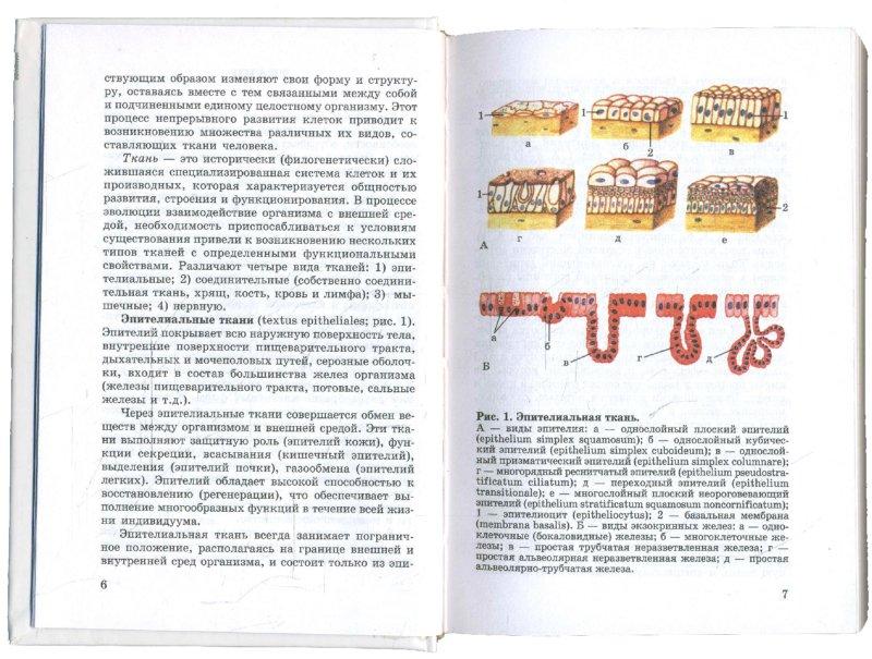 Иллюстрация 1 из 3 для Атлас анатомии человека: Учебное пособие для студентов сред. медицинских учебных заведений - Самусев, Липченко   Лабиринт - книги. Источник: Лабиринт