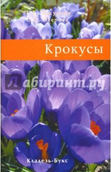 Чекурова Г.В., Озерова С.О. Крокусы