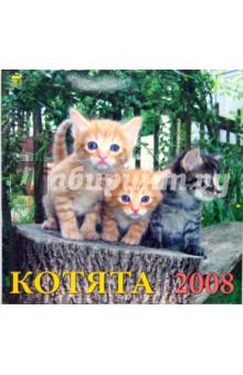 Календарь 2008 Котята (70702)