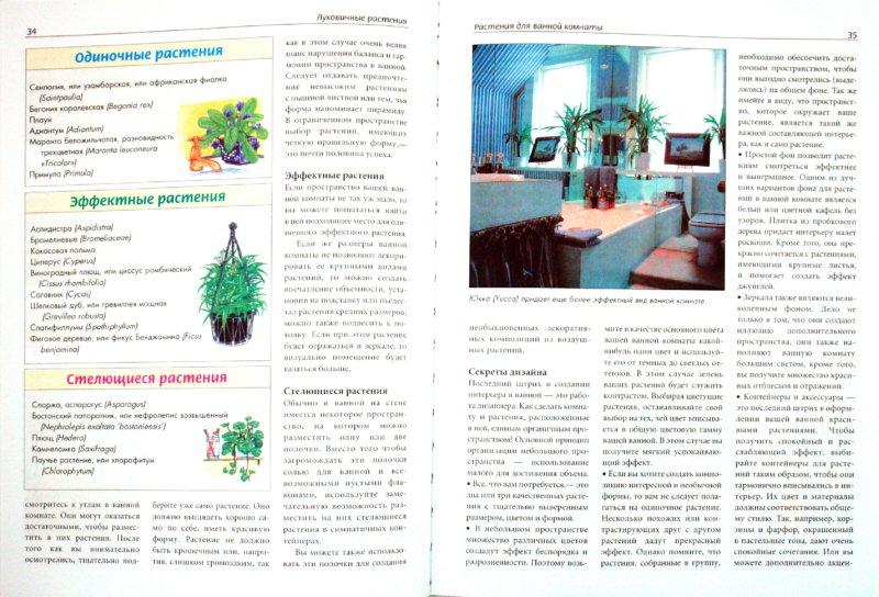 Иллюстрация 1 из 10 для Все о комнатных растениях. Луковичные растения   Лабиринт - книги. Источник: Лабиринт
