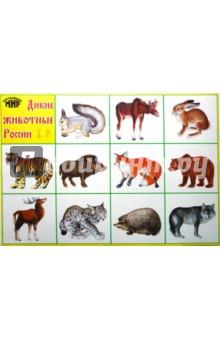 Дикие животные 1