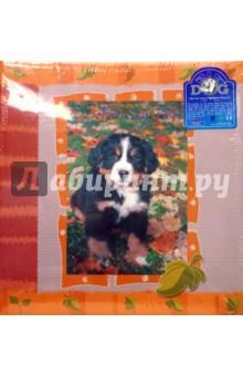 7532 Фотоальбом AV46400 3-0 Funny Pets