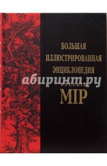 Большая иллюстрированная энциклопедия Русскiй Мiр. Том 8