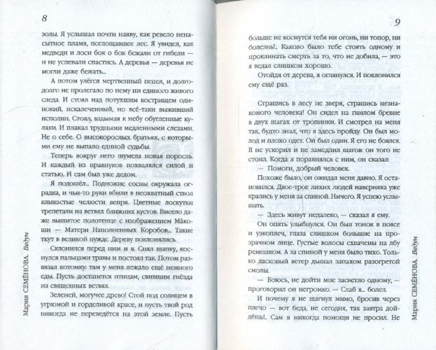 Иллюстрация 1 из 14 для Ведун - Мария Семенова | Лабиринт - книги. Источник: Лабиринт