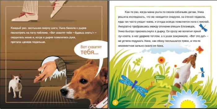 Иллюстрация 1 из 19 для Умкины истории - Арина Змиевец | Лабиринт - книги. Источник: Лабиринт