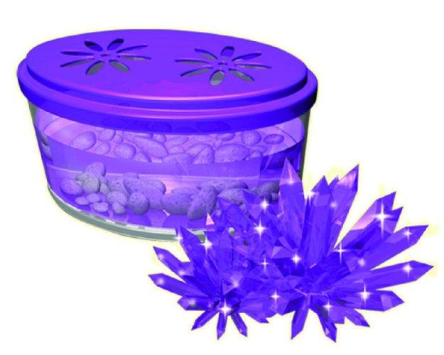 Иллюстрация 1 из 8 для Кристаллизация. Лиловый кристалл (28902) | Лабиринт - игрушки. Источник: Лабиринт