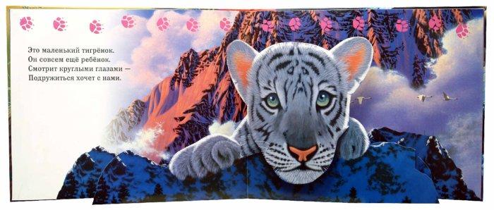 Иллюстрация 1 из 3 для Страна зверей - Шим Шиммель | Лабиринт - книги. Источник: Лабиринт