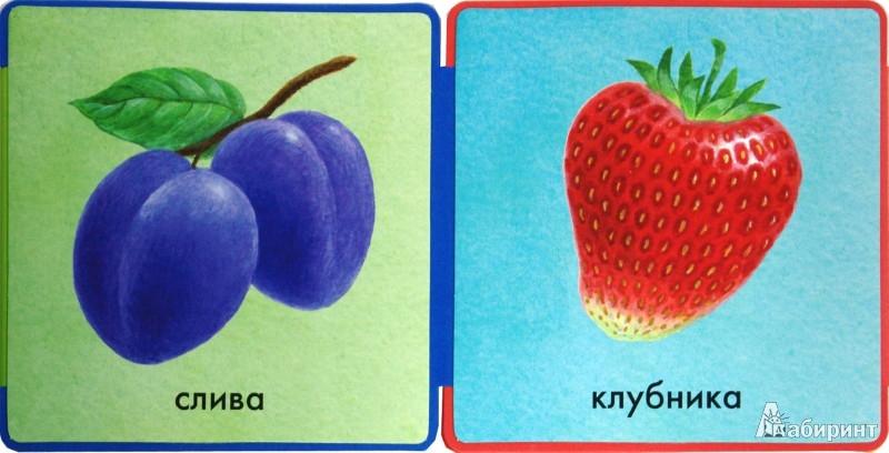 Иллюстрация 1 из 15 для Книжки-пышки-раскладушки. Фрукты и овощи | Лабиринт - книги. Источник: Лабиринт