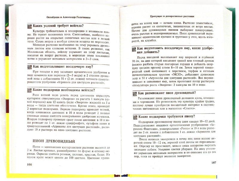 Иллюстрация 1 из 31 для Все о саде и огороде. 500 самых важных вопросов, 500 самых полных ответов - Ганичкина, Ганичкин | Лабиринт - книги. Источник: Лабиринт