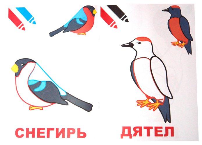 Иллюстрация 1 из 7 для Маленький художник. Птицы. Выпуск 8   Лабиринт - книги. Источник: Лабиринт