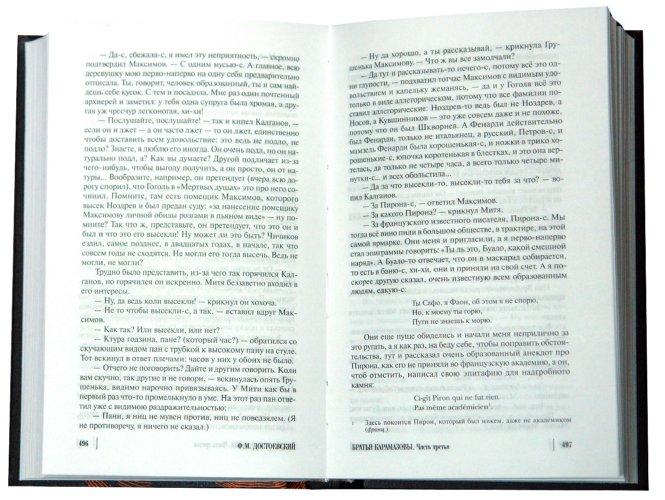 Иллюстрация 1 из 21 для Братья Карамазовы - Федор Достоевский   Лабиринт - книги. Источник: Лабиринт