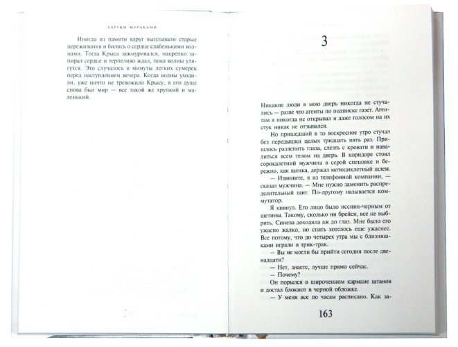 Иллюстрация 1 из 5 для Слушай песню ветра. Пинбол 1973 (тв) - Харуки Мураками | Лабиринт - книги. Источник: Лабиринт