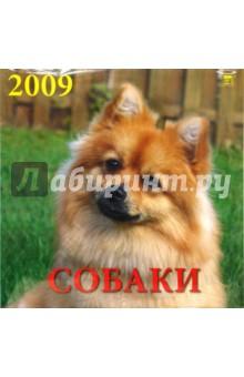 Календарь 2009 Собаки (70820)