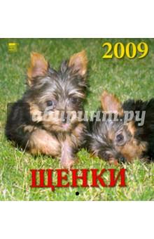 Календарь 2009 Щенки (30804)