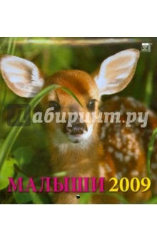 Календарь 2009 Малыши (30810)