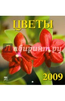 Календарь 2009 Цветы (30816)