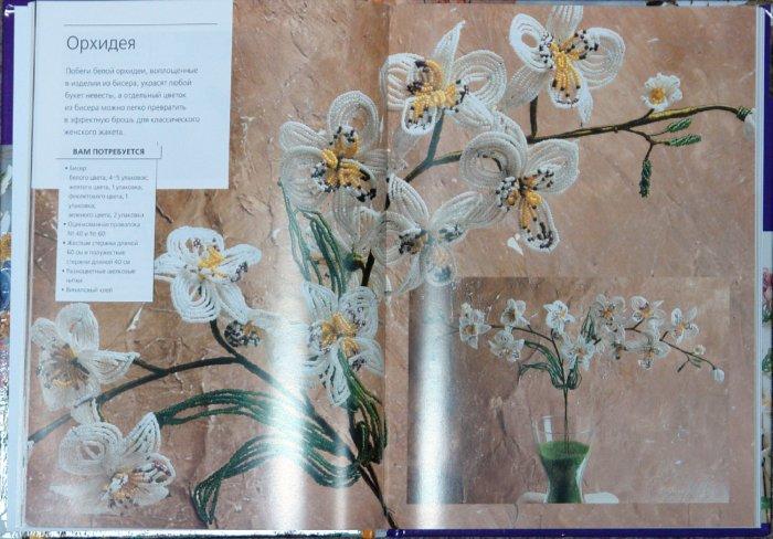 Книга: цветочные фантазии из бисера - скачать для прочтения Название: Фантазии из бисера: цветы, бонсай.