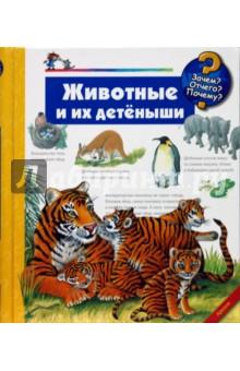 Животные и их детеныши