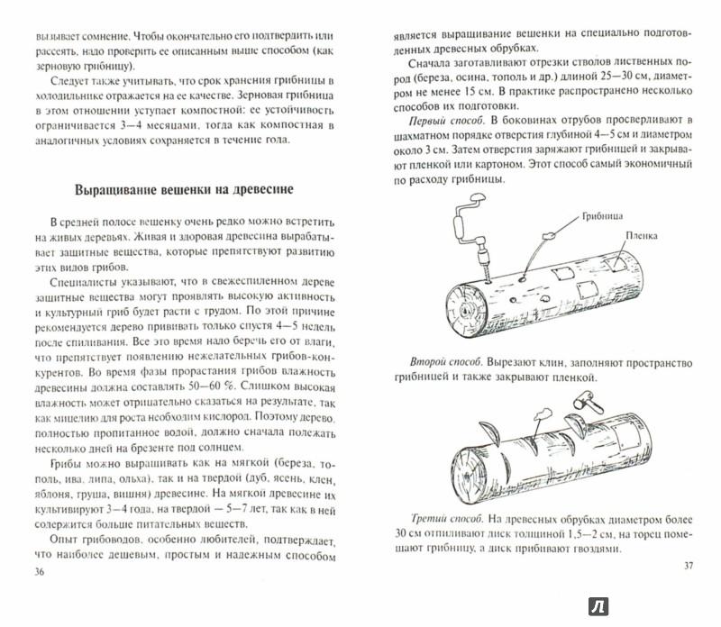 Иллюстрация 1 из 5 для Выращивание грибов дома и на участке - Челищев, Иванов | Лабиринт - книги. Источник: Лабиринт
