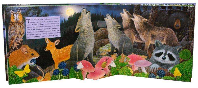 Иллюстрация 1 из 26 для Ночной лес - Вуд, Дэвис | Лабиринт - книги. Источник: Лабиринт