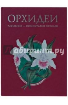 Гульд Джон Орхидеи. Линдения - иконография орхидей (кожаный)