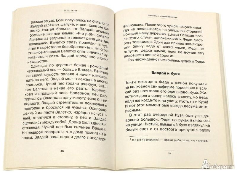 Иллюстрация 1 из 3 для Рассказы о всякой живности - Василий Белов   Лабиринт - книги. Источник: Лабиринт
