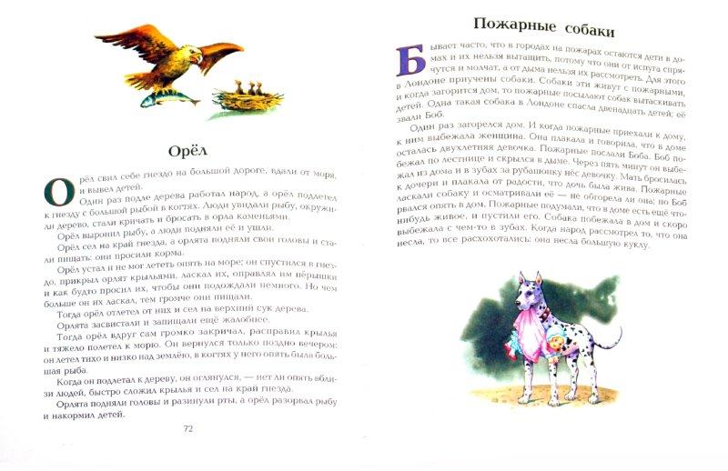 Иллюстрация 1 из 43 для Все лучшие сказки и рассказы - Лев Толстой | Лабиринт - книги. Источник: Лабиринт