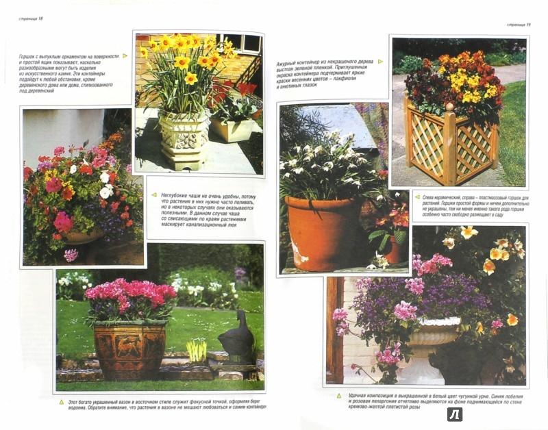 Иллюстрация 1 из 24 для Все о контейнерных растениях - Дэвид Хессайон | Лабиринт - книги. Источник: Лабиринт