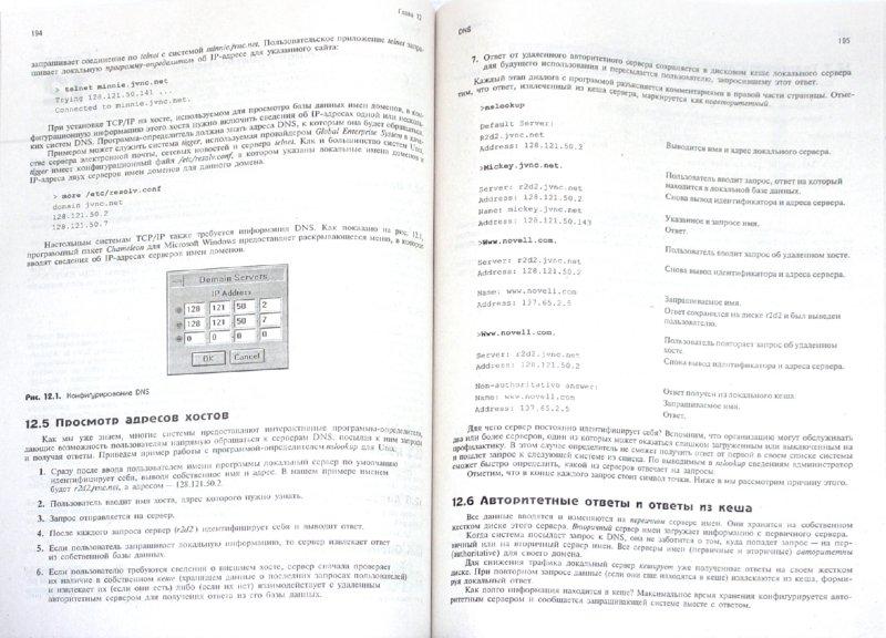 Иллюстрация 1 из 14 для TCP/IP. Архитектура, протоколы, реализация (включая IPv6 и IP Security) - Синди Фейт | Лабиринт - книги. Источник: Лабиринт