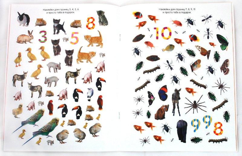 Иллюстрация 1 из 10 для Обведи, наклей, узнай (без фломастера). Животные | Лабиринт - книги. Источник: Лабиринт
