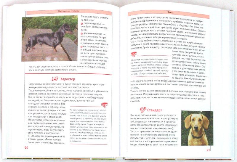 Иллюстрация 1 из 3 для Самые популярные породы собак | Лабиринт - книги. Источник: Лабиринт