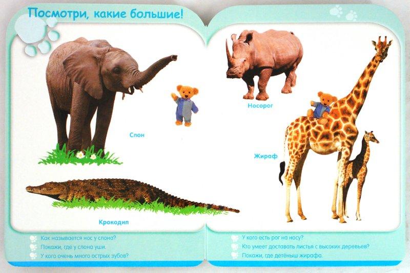 Иллюстрация 1 из 25 для Мир животных (24-36 мес.)   Лабиринт - книги. Источник: Лабиринт