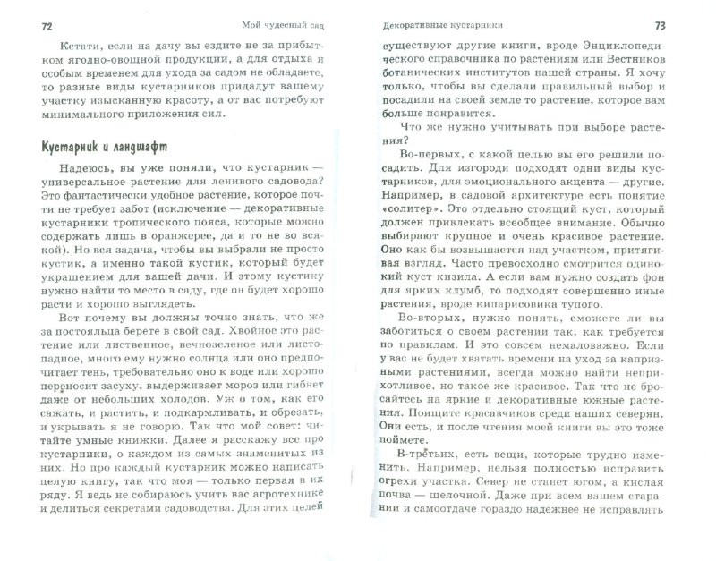 Иллюстрация 1 из 9 для Мой чудесный сад: декоративные кустарники - Ирина Калинина | Лабиринт - книги. Источник: Лабиринт