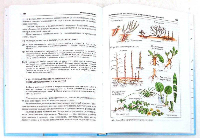 Иллюстрация 1 из 31 для Биология. Бактерии, грибы, растения. 6 класс: учебник для общеобразовательных учреждений - Владимир Пасечник | Лабиринт - книги. Источник: Лабиринт