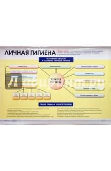Инфекционные заболевания. Личная гигиена. Плакат (30361)