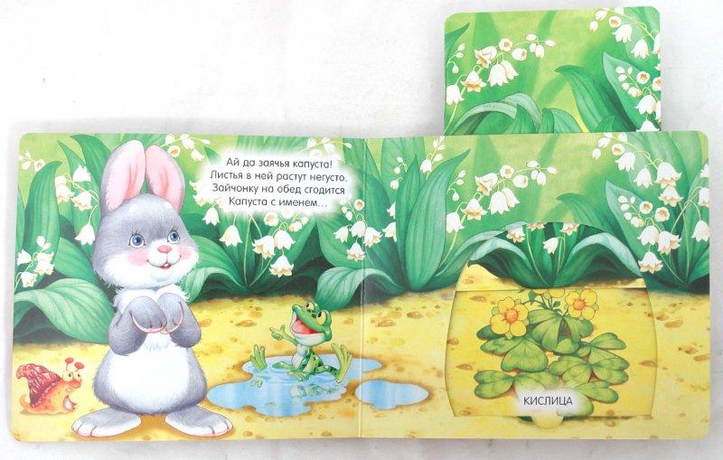 Иллюстрация 1 из 14 для Книжки-задвижки. В лесу - Гайда Лагздынь   Лабиринт - книги. Источник: Лабиринт